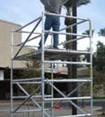 Single and Extension Ladders