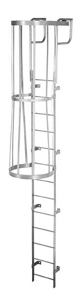 Steel Fixed Cage Wall Ladder
